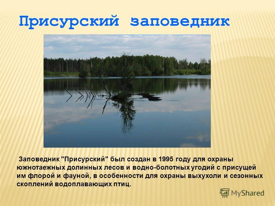Присурский заповедник Заповедник Присурский был создан в 1995 году для охраны южнотаежных долинных лесов и водно-болотных угодий с присущей им флорой и фауной, в особенности для охраны выхухоли и сезонных скоплений водоплавающих птиц.