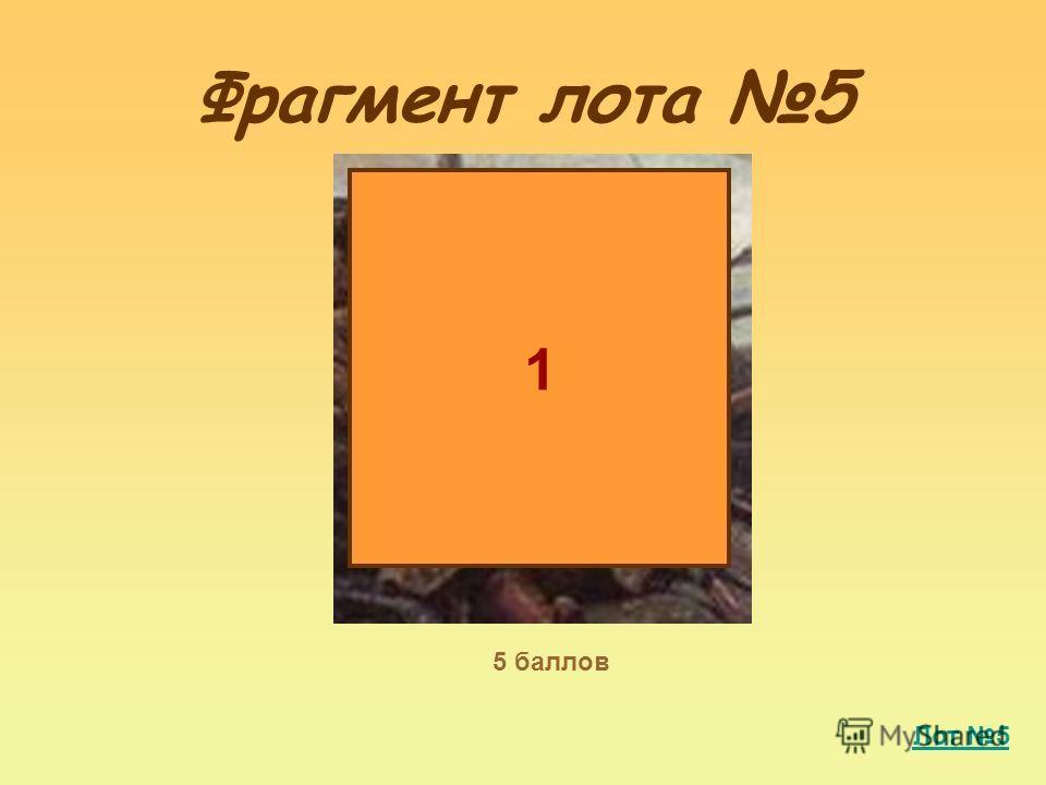 Фрагмент лота 5 1 5 баллов Лот 5