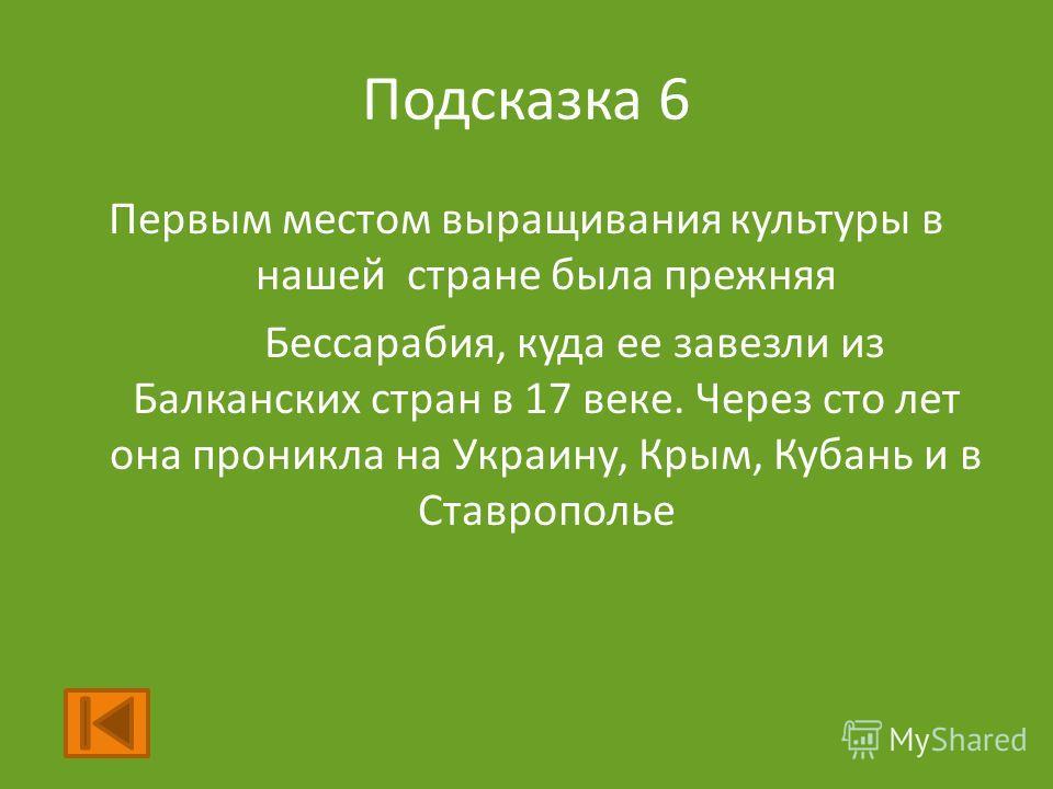 Подсказка 6 Первым местом выращивания культуры в нашей стране была прежняя Бессарабия, куда ее завезли из Балканских стран в 17 веке. Через сто лет она проникла на Украину, Крым, Кубань и в Ставрополье