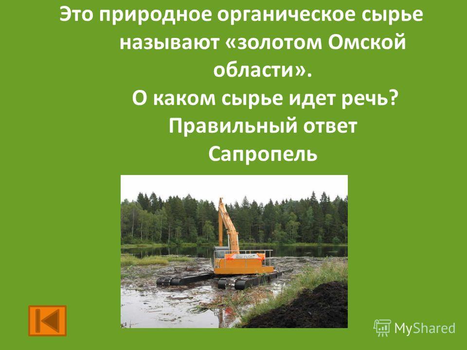 Это природное органическое сырье называют «золотом Омской области». О каком сырье идет речь? Правильный ответ Сапропель