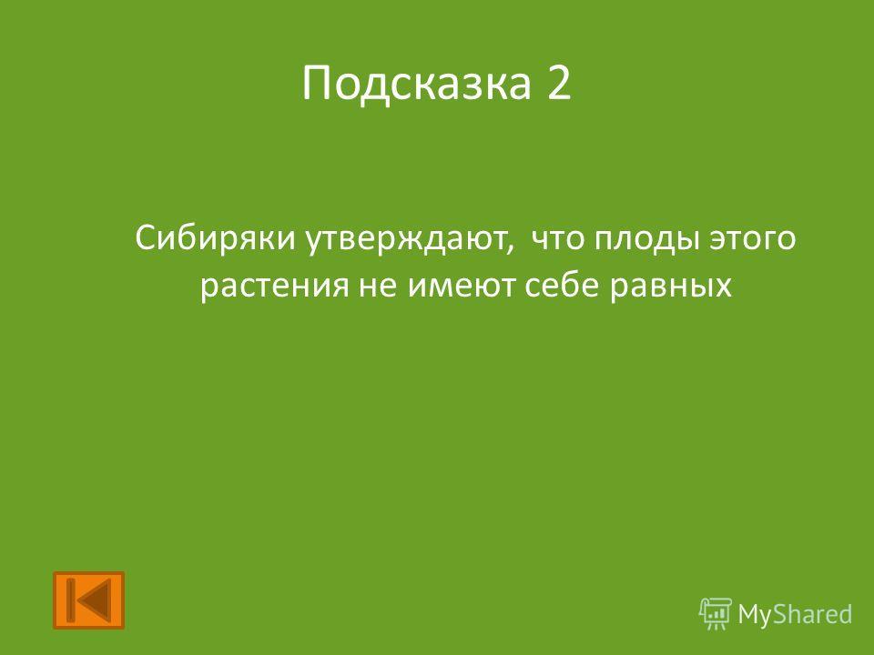 Подсказка 2 Сибиряки утверждают, что плоды этого растения не имеют себе равных