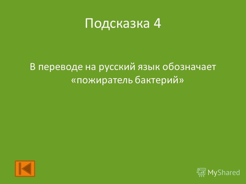 Подсказка 4 В переводе на русский язык обозначает «пожиратель бактерий»