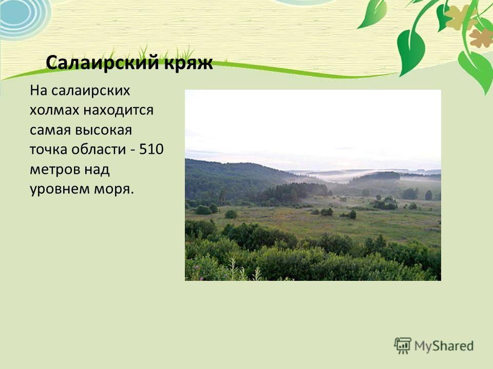 Салаирский кряж На салаирских холмах находится самая высокая точка области - 510 метров над уровнем моря.