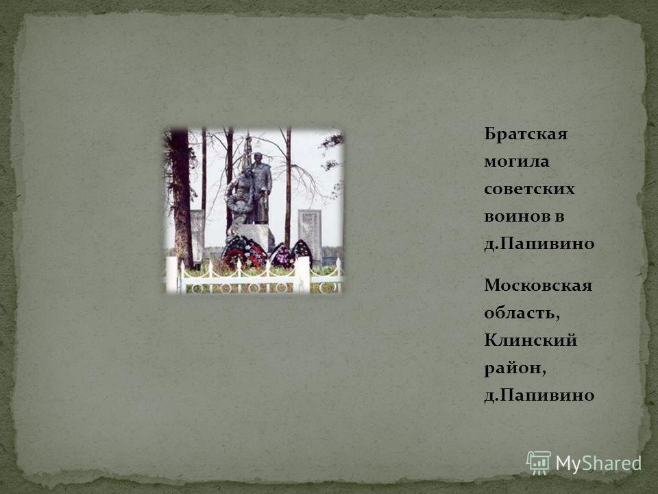 Братская могила советских воинов в д.Папивино Московская область, Клинский район, д.Папивино