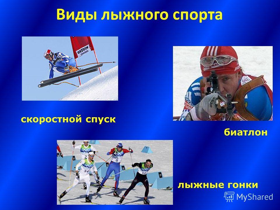 Виды лыжного спорта скоростной спуск биатлон лыжные гонки