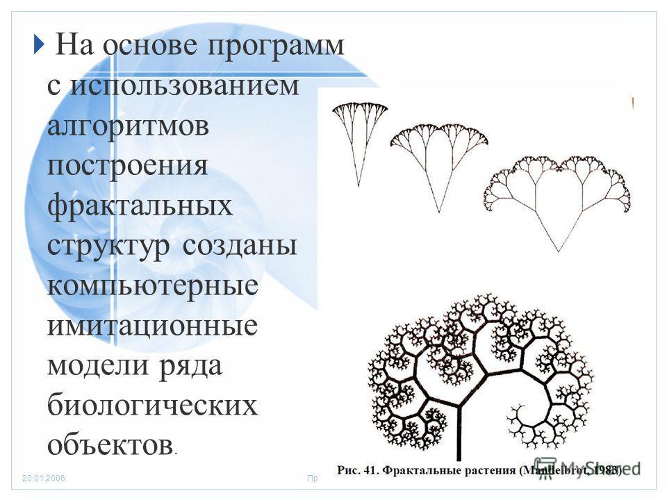 Стр. 1020.01.2006Презентация На основе программ с использованием алгоритмов построения фрактальных структур созданы компьютерные имитационные модели ряда биологических объектов.