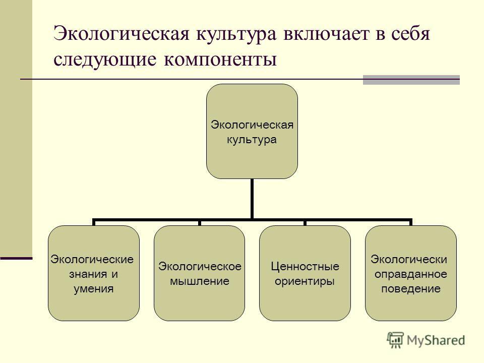 Экологическая культура включает в себя следующие компоненты Экологическая культура Экологические знания и умения Экологическое мышление Ценностные ориентиры Экологически оправданное поведение