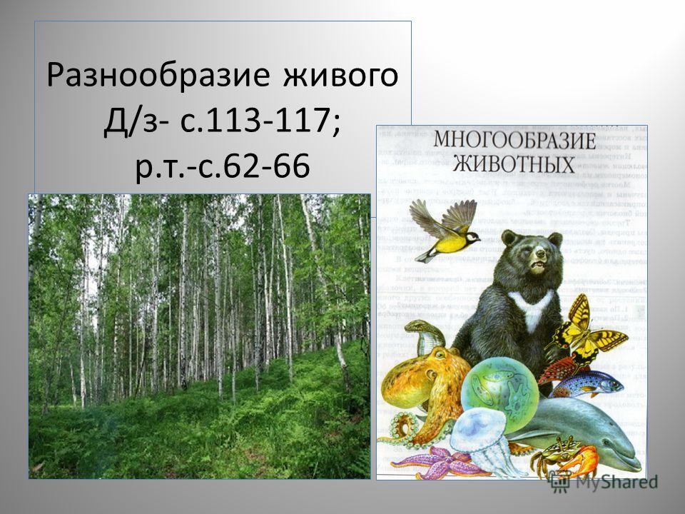 Разнообразие живого Д/з- с.113-117; р.т.-с.62-66
