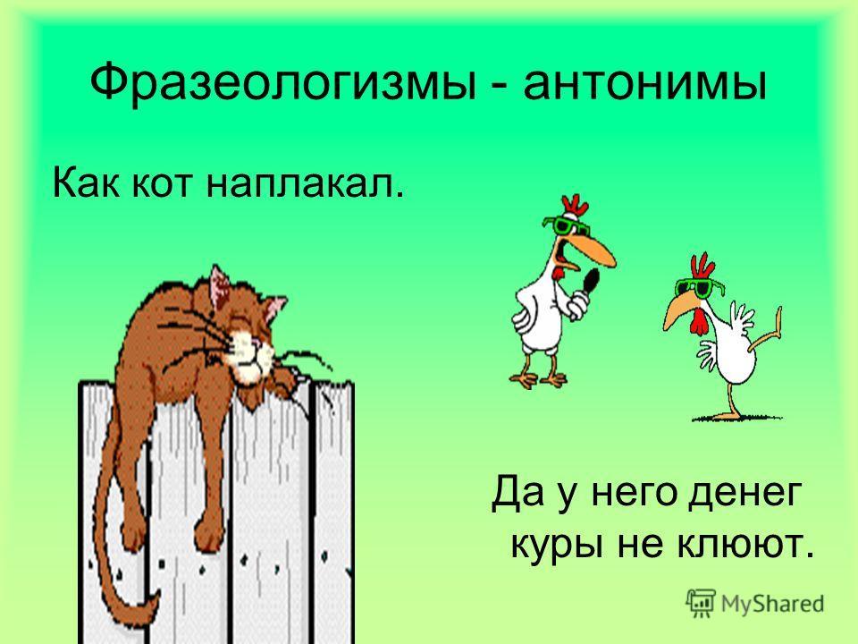 Фразеологизмы - антонимы Как кот наплакал. Да у него денег куры не клюют.