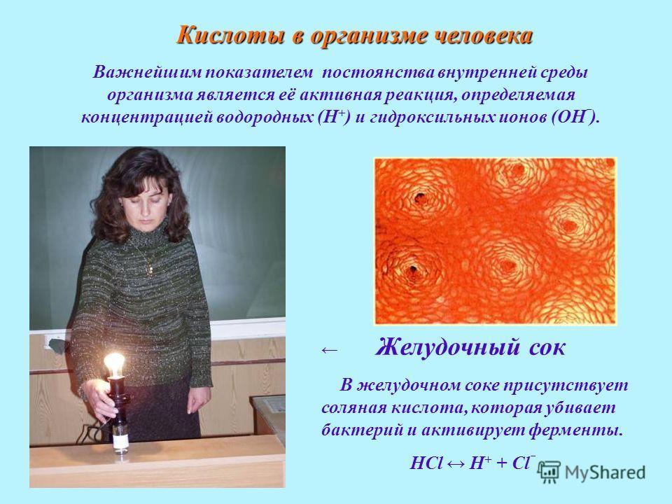 Важнейшим показателем постоянства внутренней среды организма является её активная реакция, определяемая концентрацией водородных (Н + ) и гидроксильных ионов (ОН ). Желудочный сок В желудочном соке присутствует соляная кислота, которая убивает бактер