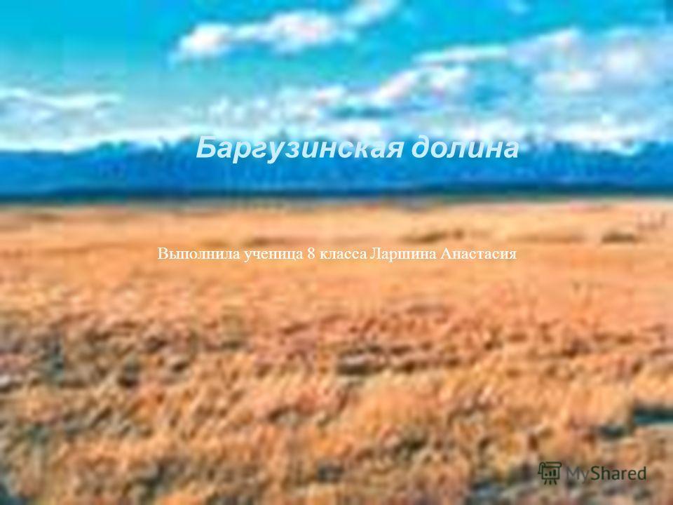 Баргузинская долина Выполнила ученица 8 класса Ларшина Анастасия