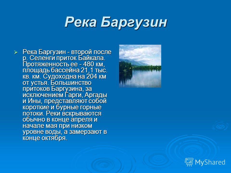 Река Баргузин Река Баргузин - второй после р. Селенги приток Байкала. Протяженность ее - 480 км, площадь бассейна 21,1 тыс. кв. км. Судоходна на 204 км от устья. Большинство притоков Баргузина, за исключением Гарги, Аргады и Ины, представляют собой к