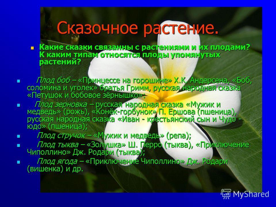 Сказочное растение. Какие сказки связанны с растениями и их плодами? К каким типам относятся плоды упомянутых растений? Какие сказки связанны с растениями и их плодами? К каким типам относятся плоды упомянутых растений? Плод боб – «Принцессе на горош