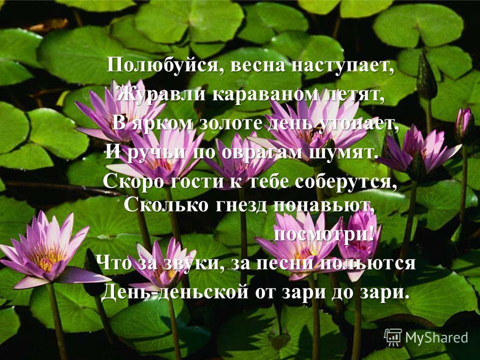 П олюбуйся, весна наступает, Журавли караваном летят, В ярком золоте день утопает, И ручьи по оврагам шумят. Скоро гости к тебе соберутся, Сколько гнезд понавьют, посмотри! Что за звуки, за песни польются День-деньской от зари до зари.