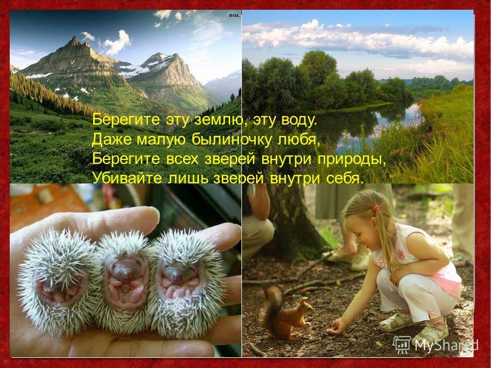 Берегите эту землю, эту воду. Даже малую былиночку любя, Берегите всех зверей внутри природы, Убивайте лишь зверей внутри себя.