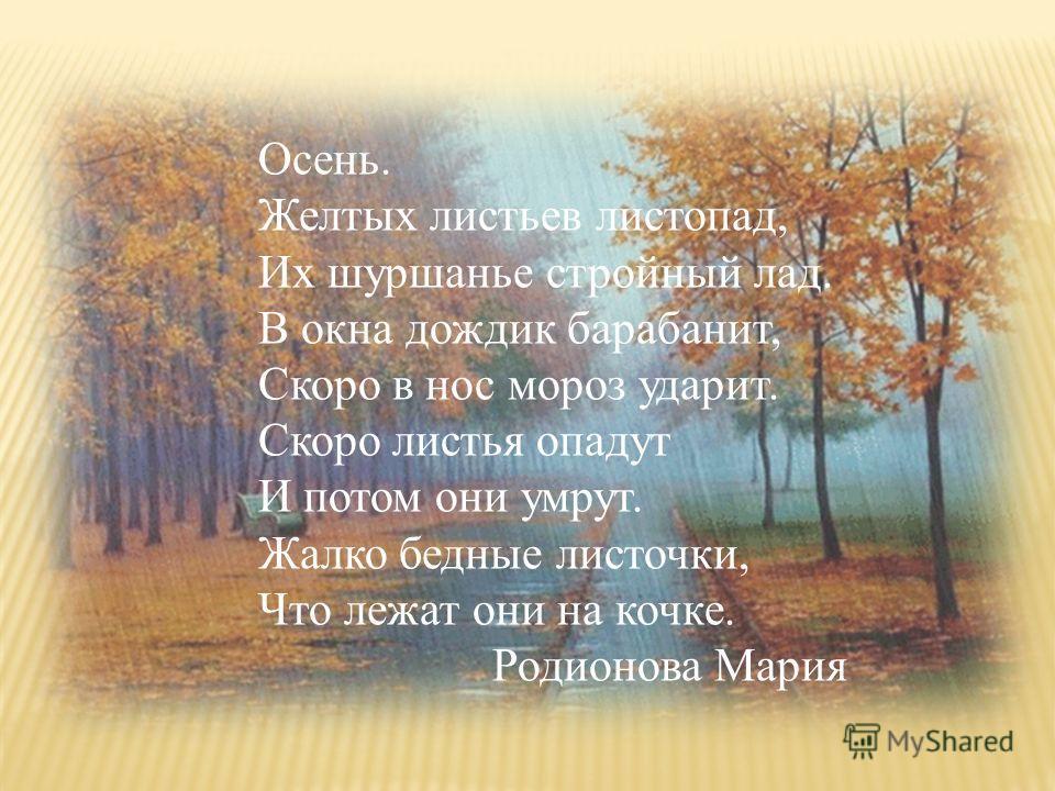 Осень. Желтых листьев листопад, Их шуршанье стройный лад. В окна дождик барабанит, Скоро в нос мороз ударит. Скоро листья опадут И потом они умрут. Жалко бедные листочки, Что лежат они на кочке. Родионова Мария
