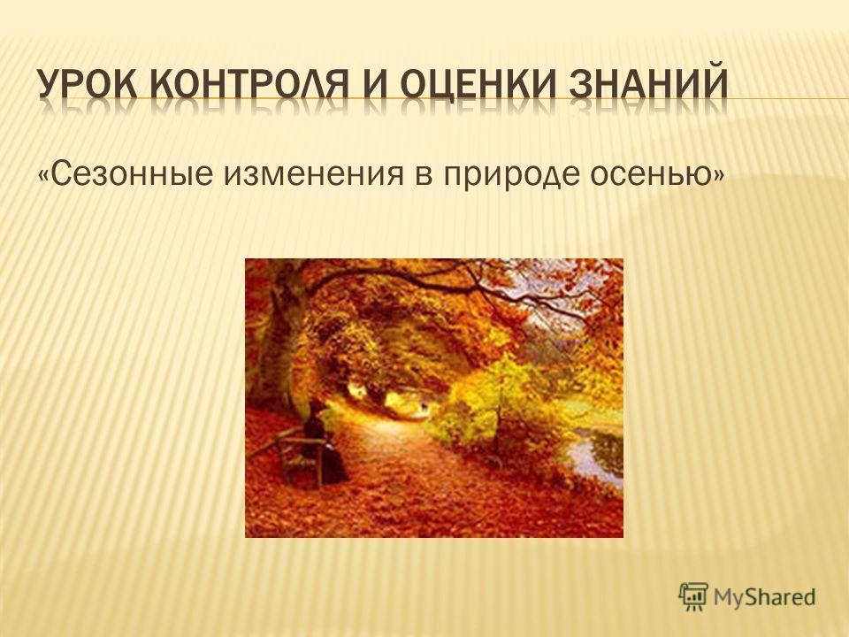 «Сезонные изменения в природе осенью»