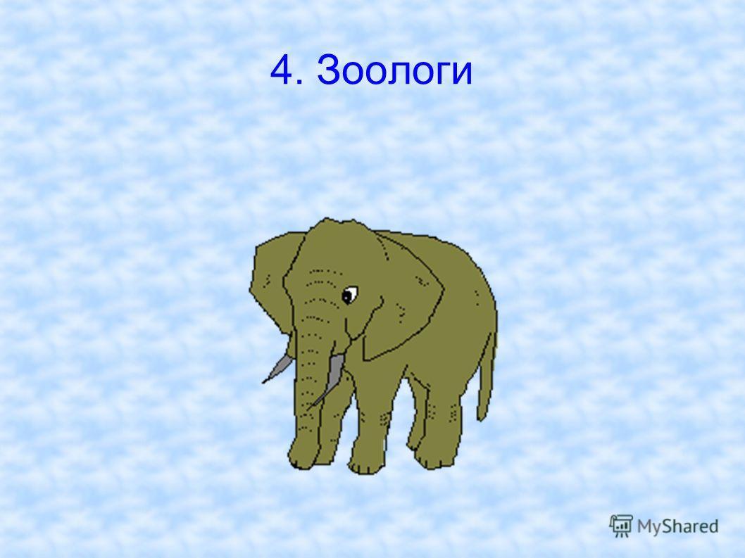4. Зоологи