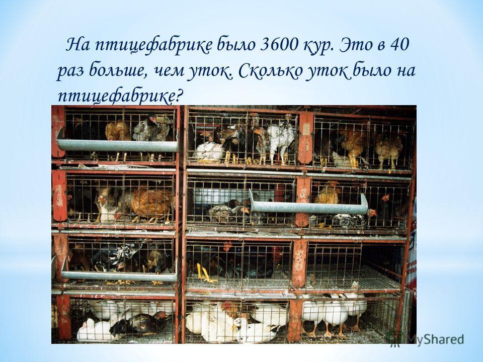 На птицефабрике было 3600 кур. Это в 40 раз больше, чем уток. Сколько уток было на птицефабрике?