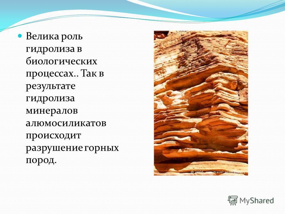 Велика роль гидролиза в биологических процессах.. Так в результате гидролиза минералов алюмосиликатов происходит разрушение горных пород.