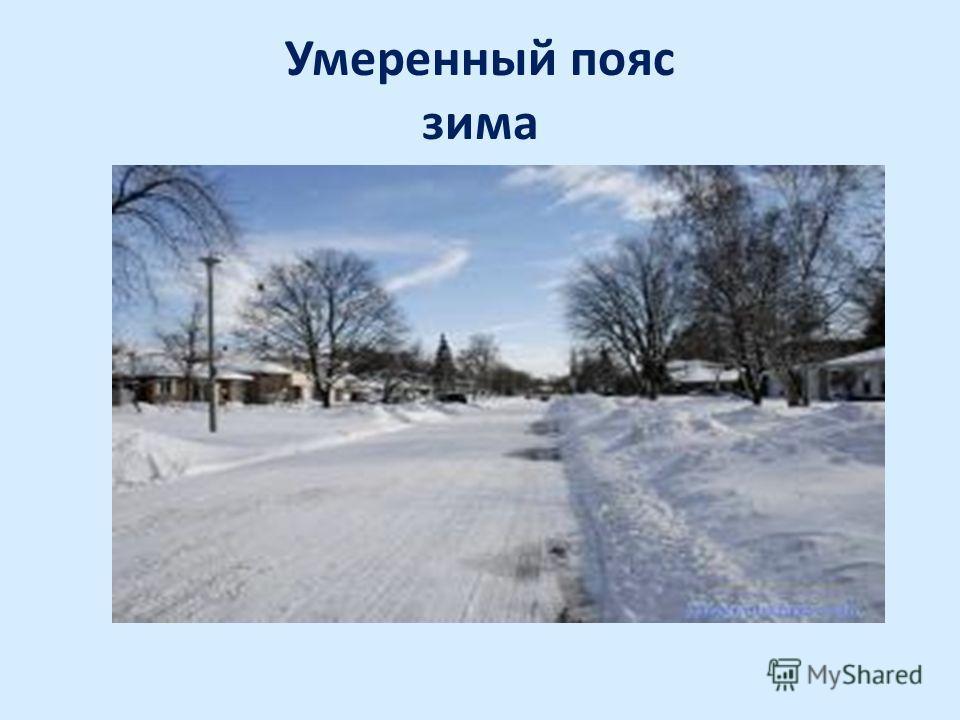 Умеренный пояс зима