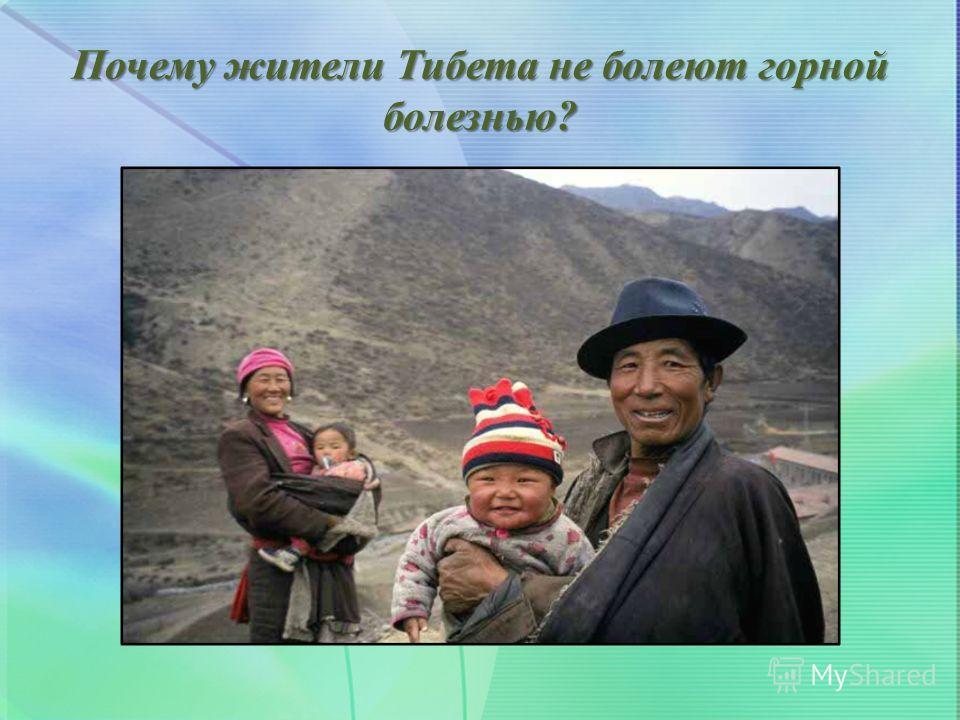 Почему жители Тибета не болеют горной болезнью?