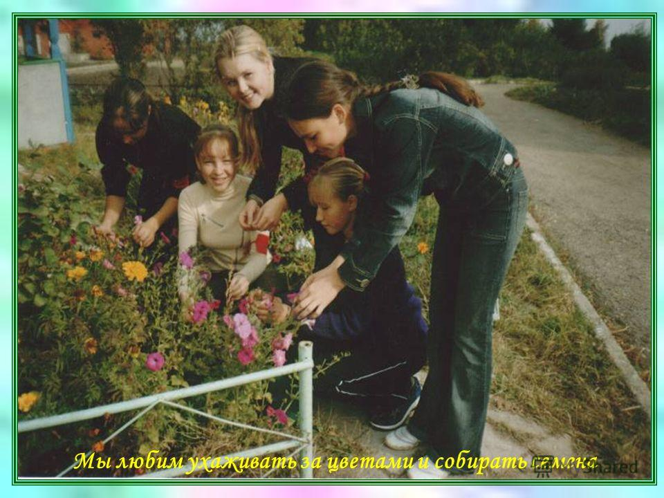 Мы любим ухаживать за цветами и собирать семена