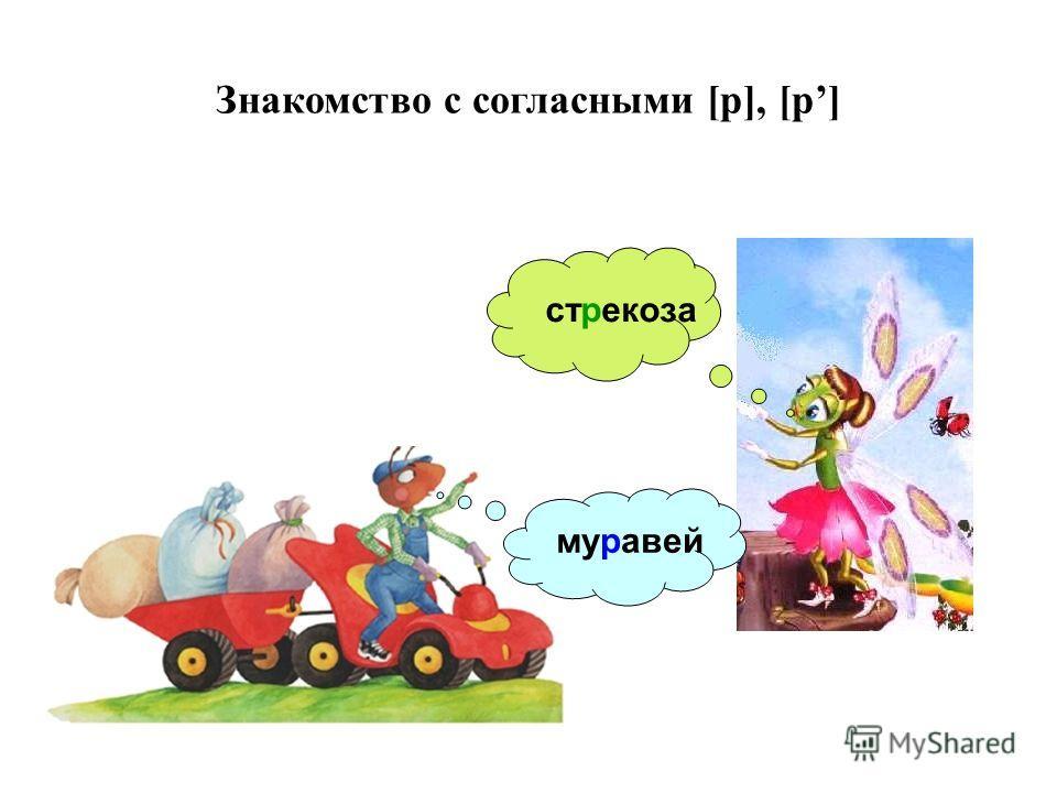 Знакомство с согласными [р], [р] стрекоза муравей