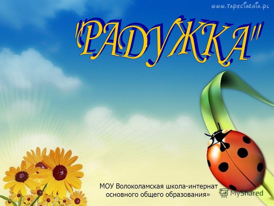 МОУ Волоколамская школа-интернат основного общего образования»
