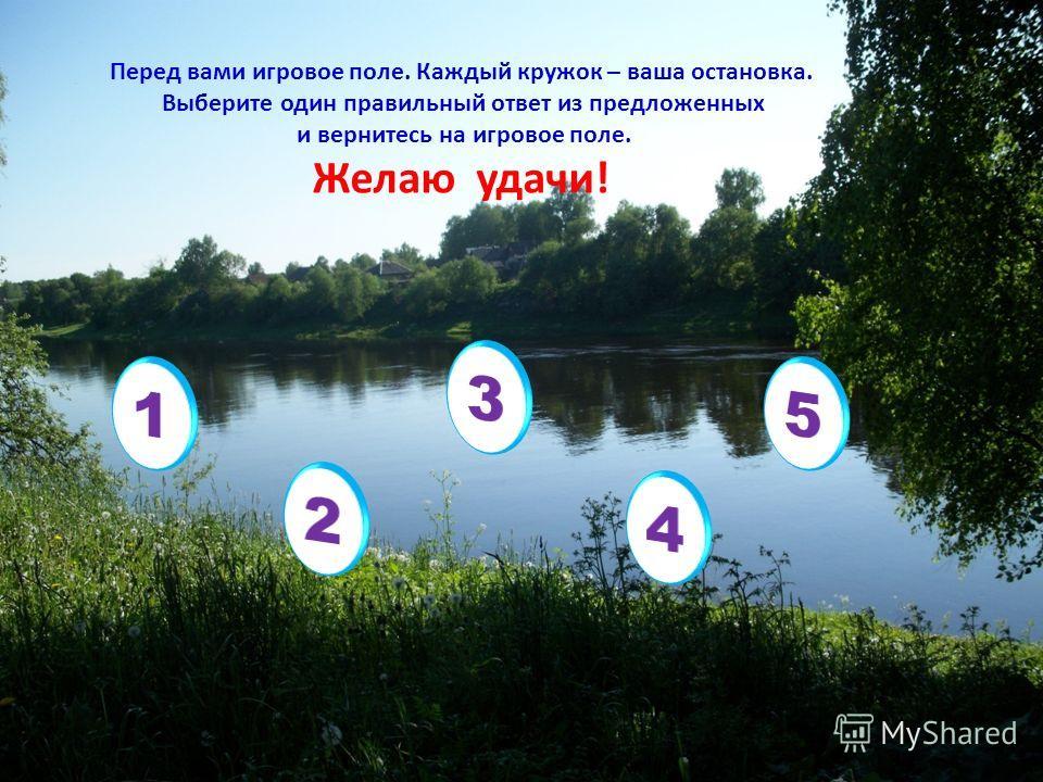 Перед вами игровое поле. Каждый кружок – ваша остановка. Выберите один правильный ответ из предложенных и вернитесь на игровое поле. Желаю удачи!