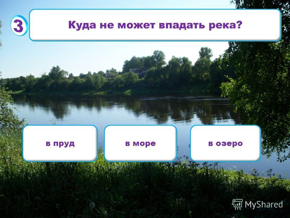 Куда не может впадать река? в прудв морев озеро