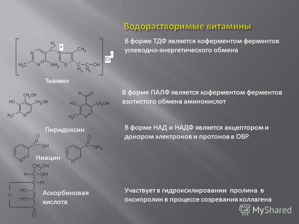 Тиамин Пиридоксин Ниацин Аскорбиновая кислота В форме ТДФ является коферментом ферментов углеводно-энергетического обмена В форме ПАЛФ является коферментом ферментов азотистого обмена аминокислот В форме НАД и НАДФ является акцептором и донором элект