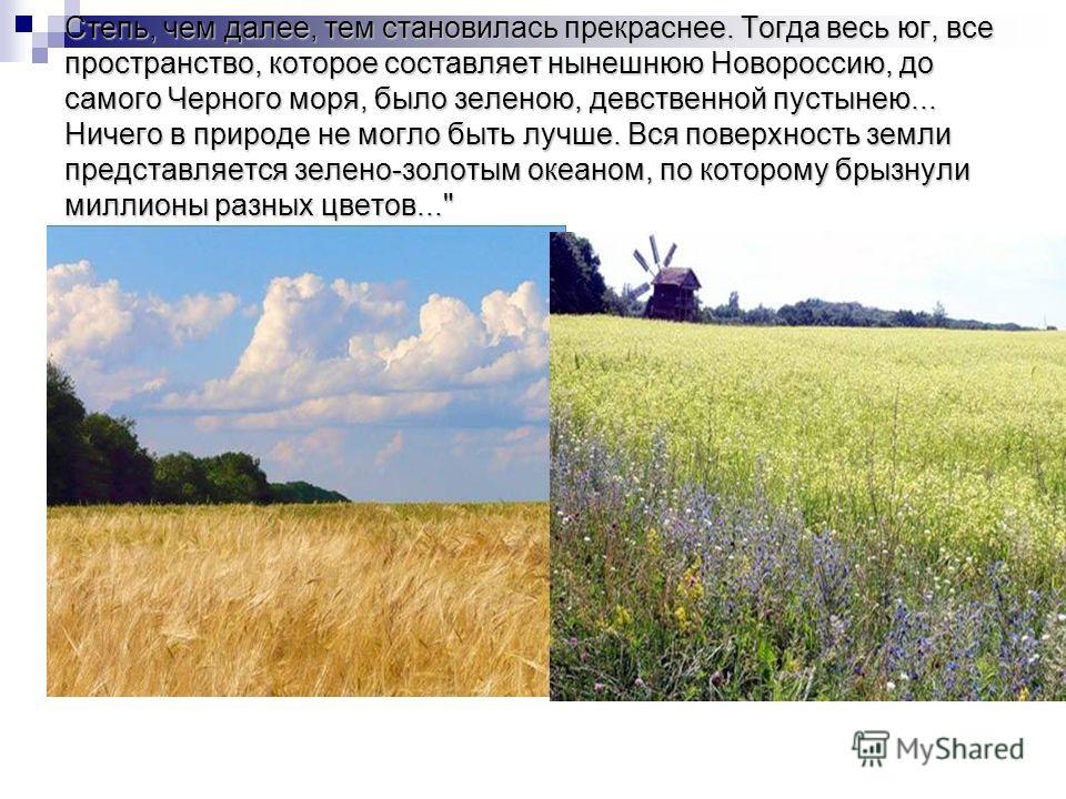 Степь, чем далее, тем становилась прекраснее. Тогда весь юг, все пространство, которое составляет нынешнюю Новороссию, до самого Черного моря, было зеленою, девственной пустынею... Ничего в природе не могло быть лучше. Вся поверхность земли представл