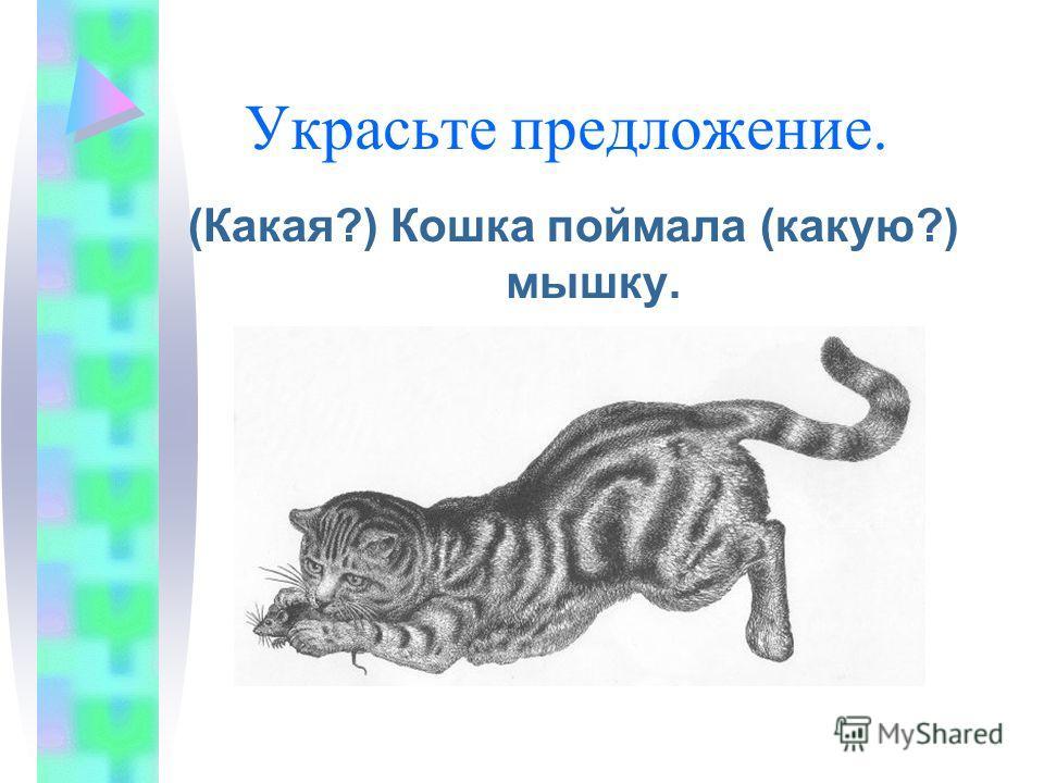 Украсьте предложение. (Какая?) Кошка поймала (какую?) мышку.
