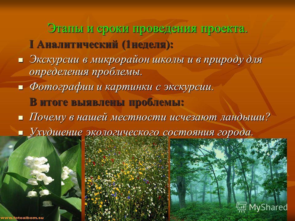 Картинки про природу авторы и названия