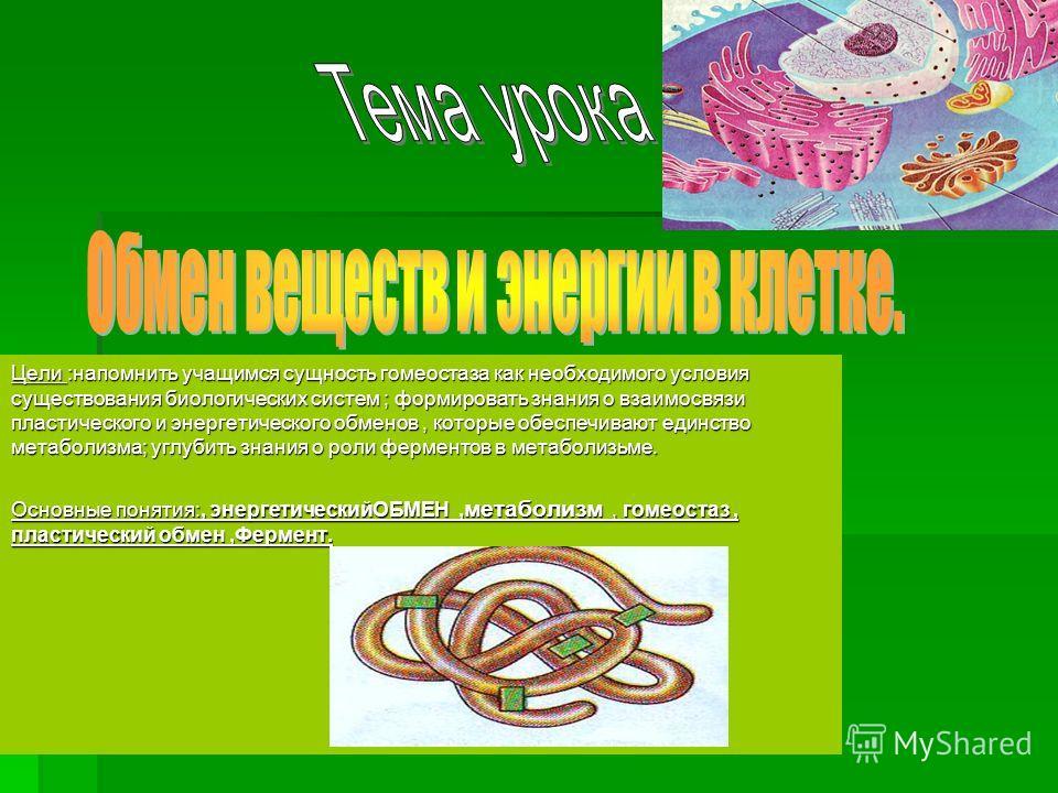 Цели :напомнить учащимся сущность гомеостаза как необходимого условия существования биологических систем ; формировать знания о взаимосвязи пластического и энергетического обменов, которые обеспечивают единство метаболизма; углубить знания о роли фер