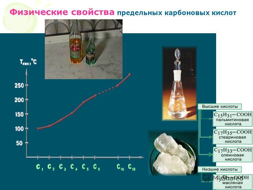 Физические свойства карбоновых кислот Физические свойства предельных карбоновых кислот