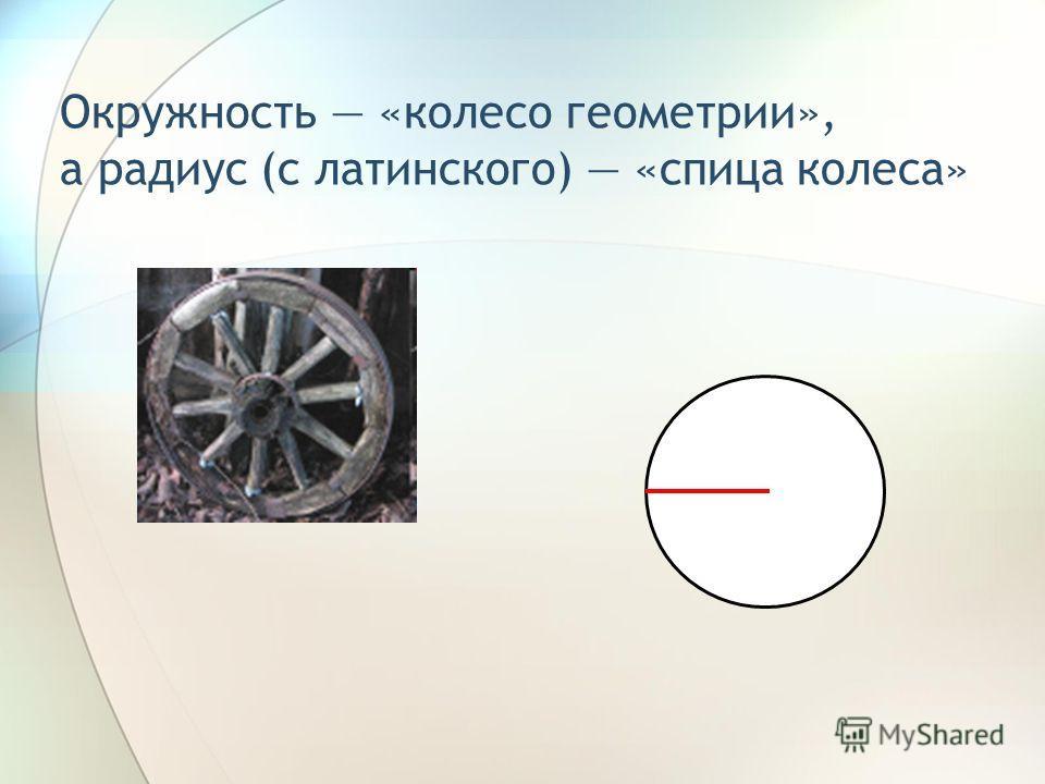Окружность «колесо геометрии», а радиус (с латинского) «спица колеса»