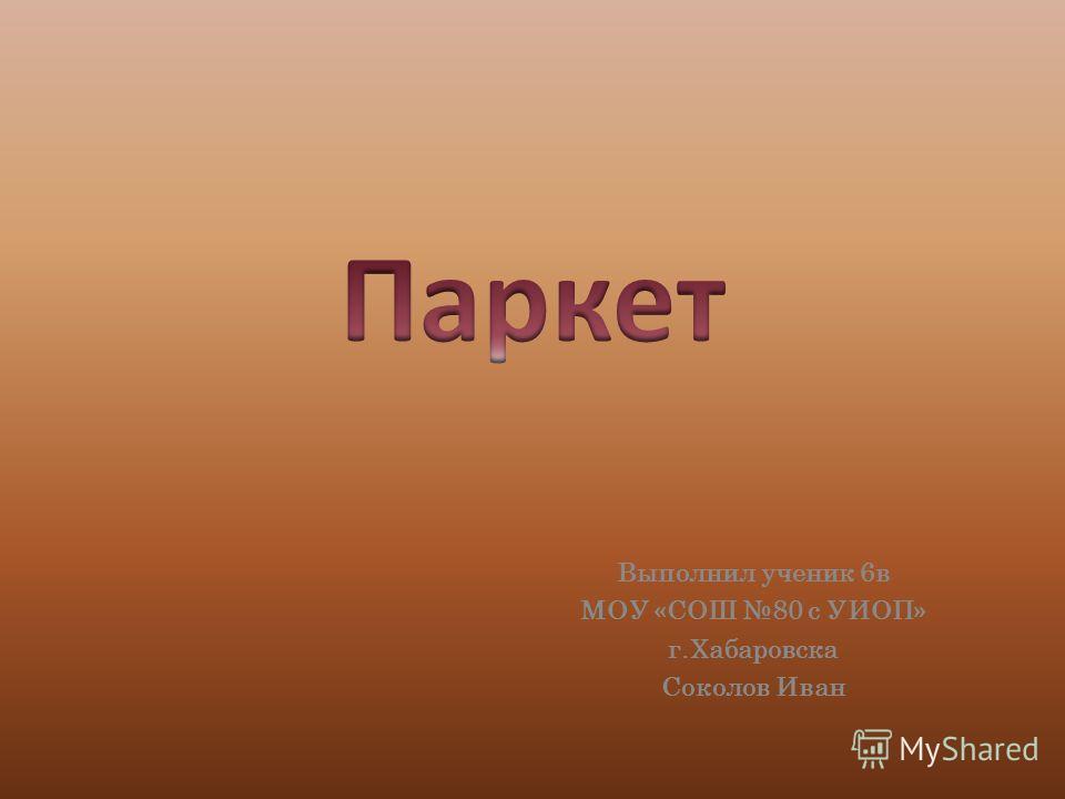 Выполнил ученик 6в МОУ «СОШ 80 с УИОП» г.Хабаровска Соколов Иван