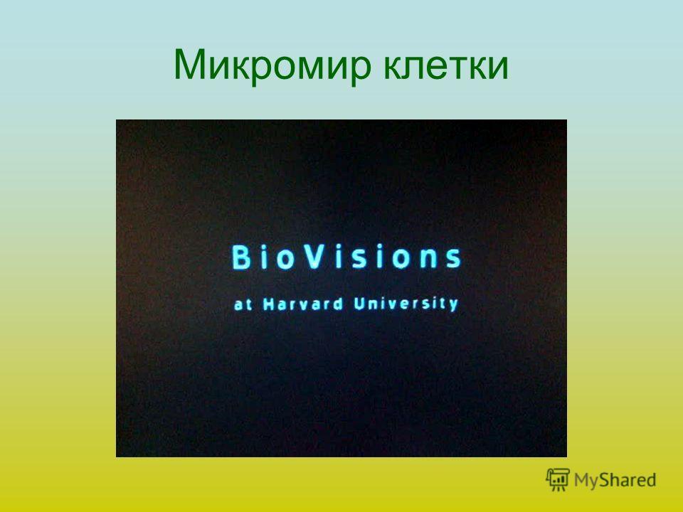 Микромир клетки