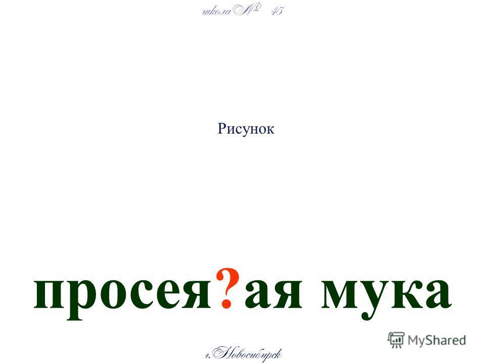 школа 45 г. Новосибирск просея?ая мука Рисунок