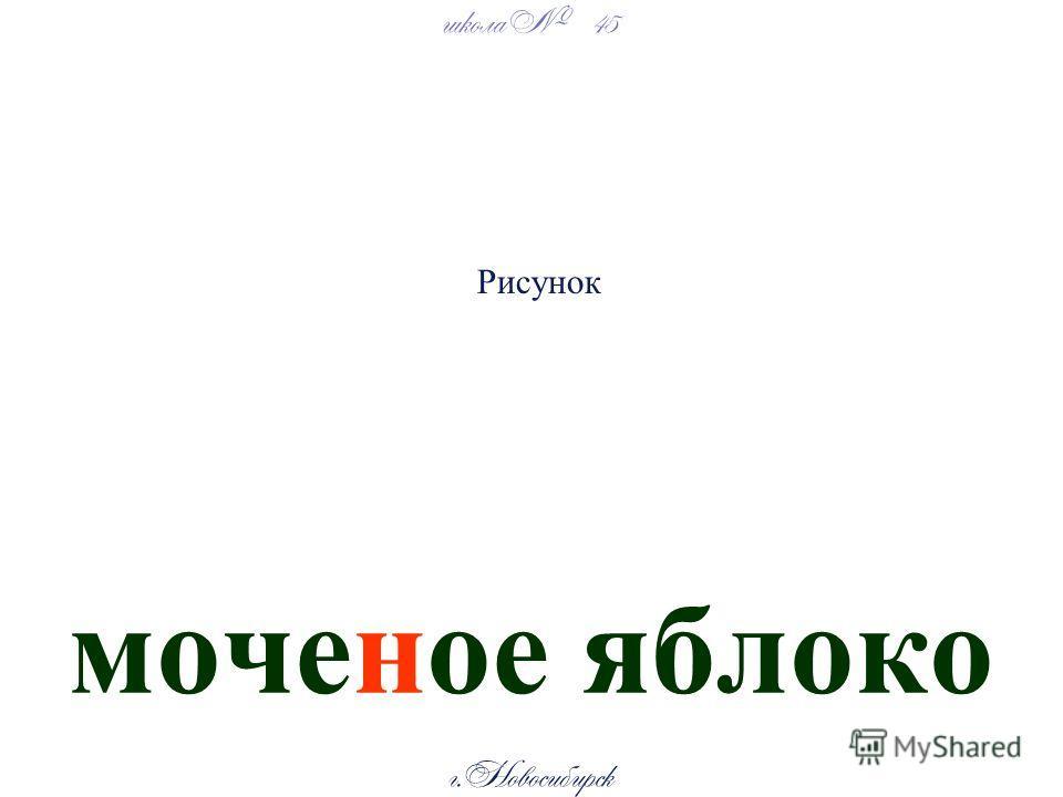 школа 45 г. Новосибирск моченое яблоко Рисунок