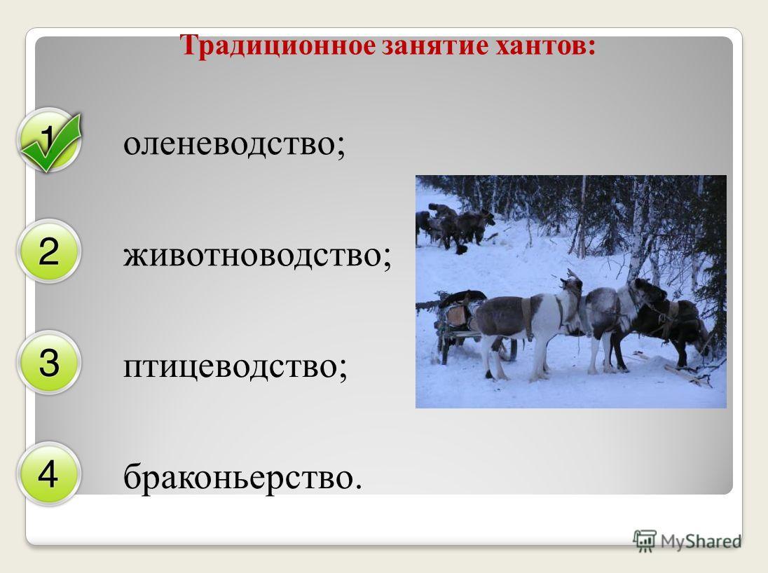 Традиционное занятие хантов: оленеводство; животноводство; птицеводство; браконьерство.