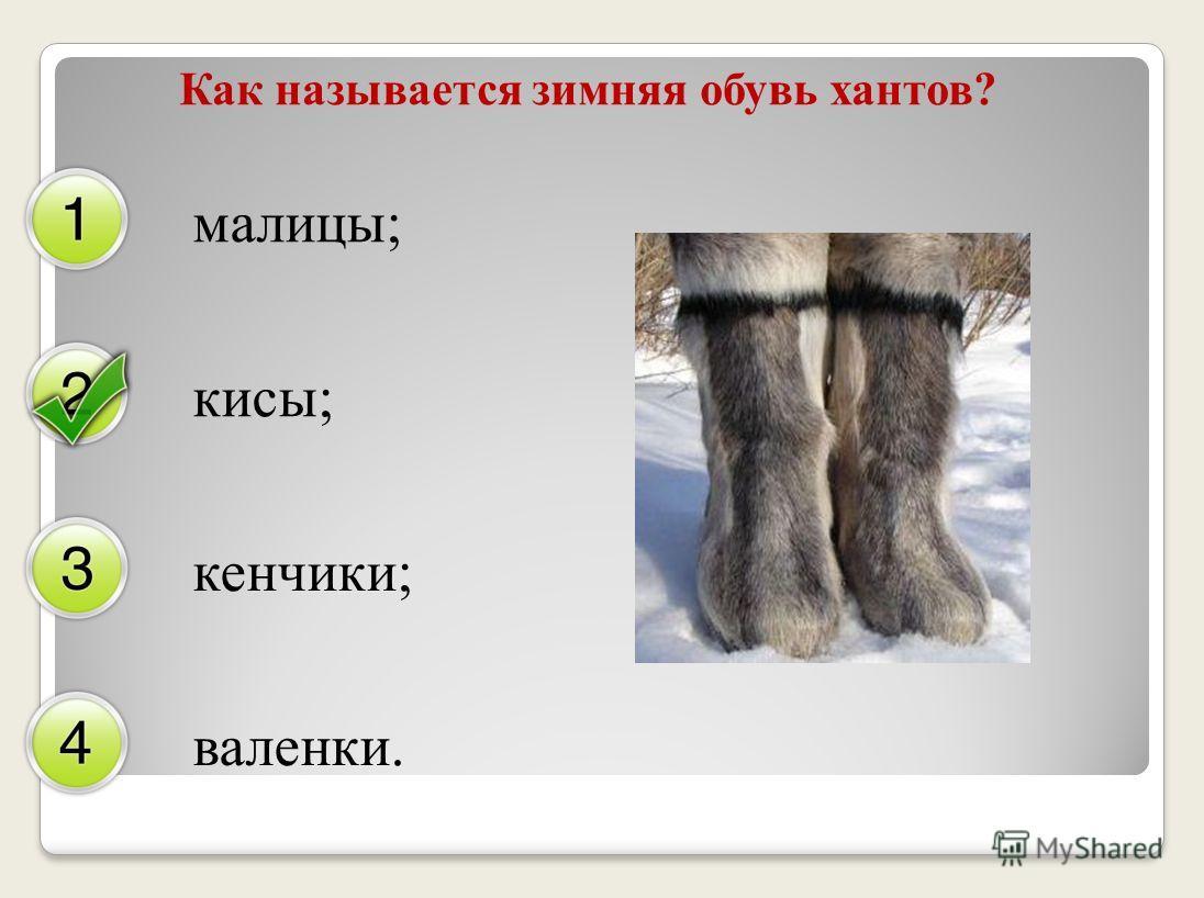 Как называется зимняя обувь хантов? малицы; кисы; кенчики; валенки.