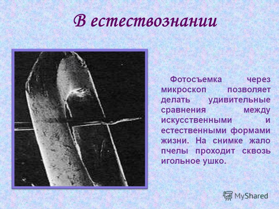В естествознании Фотосъемка через микроскоп позволяет делать удивительные сравнения между искусственными и естественными формами жизни. На снимке жало пчелы проходит сквозь игольное ушко.
