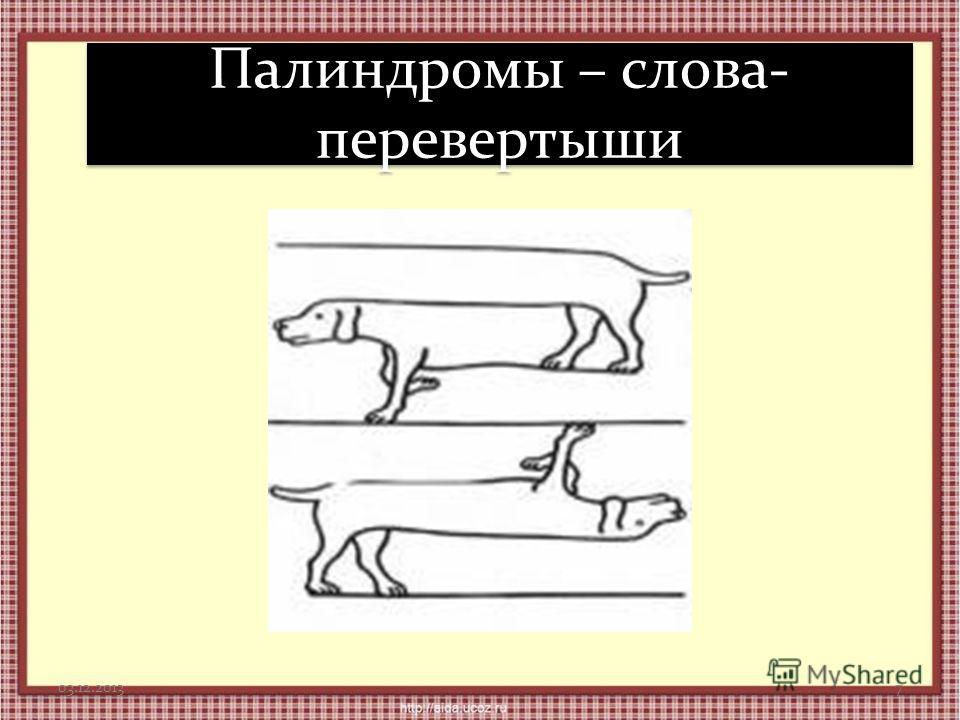 Палиндромы – слова- перевертыши 03.12.20137