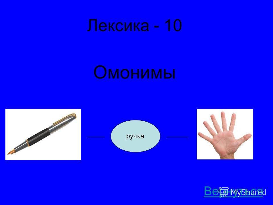 Лексика - 10 Омонимы Вернуться ручка