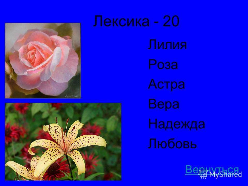 Лексика - 20 Лилия Роза Астра Вера Надежда Любовь Вернуться