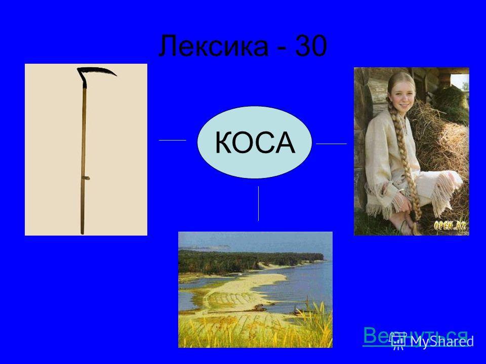 Лексика - 30 Вернуться КОСА