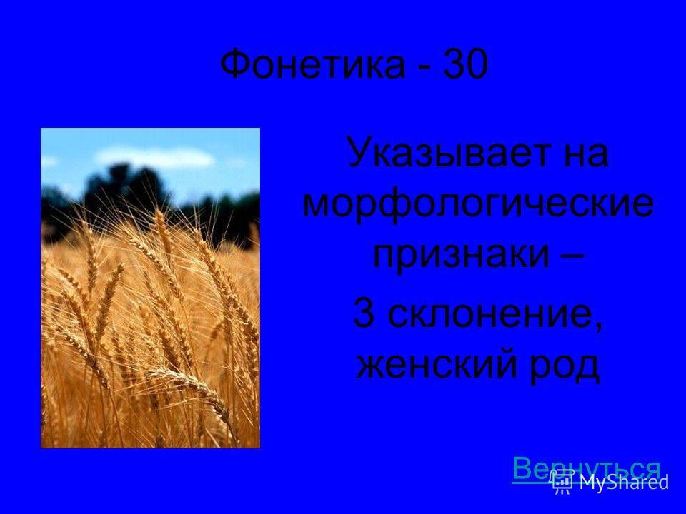 Фонетика - 30 Указывает на морфологические признаки – 3 склонение, женский род Вернуться